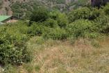 Крым Недвижимость  в Алуште   цены  земельный участок
